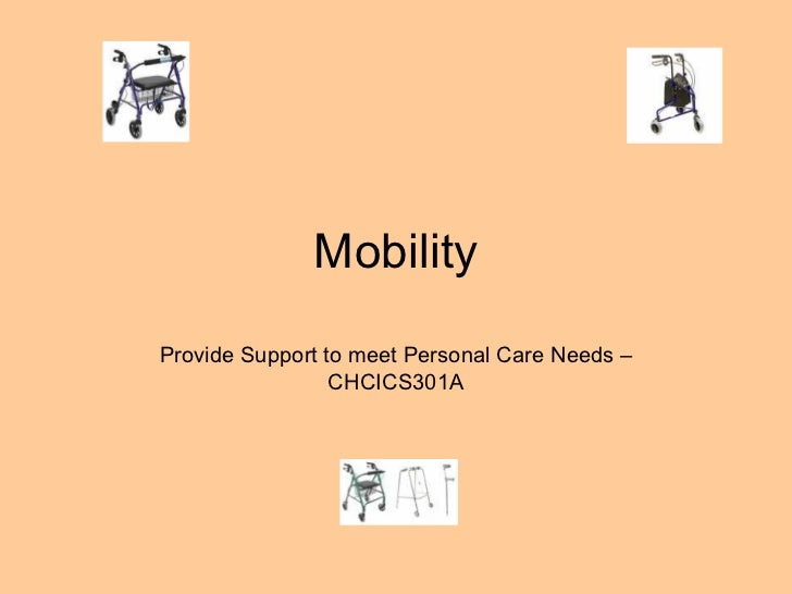 provide support to meet personal care needs powerpoint