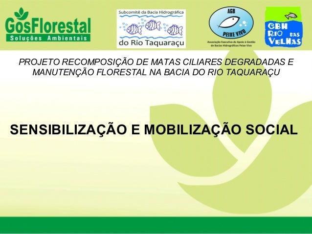 PROJETO RECOMPOSIÇÃO DE MATAS CILIARES DEGRADADAS E MANUTENÇÃO FLORESTAL NA BACIA DO RIO TAQUARAÇU SENSIBILIZAÇÃO E MOBILI...