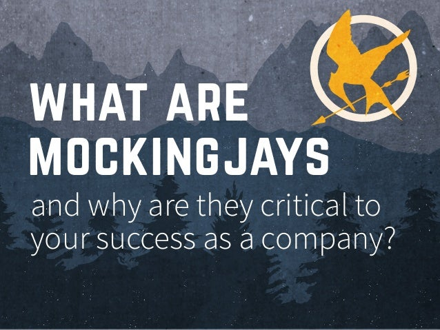 and why are they critical to your success as a company? what are mockingjays