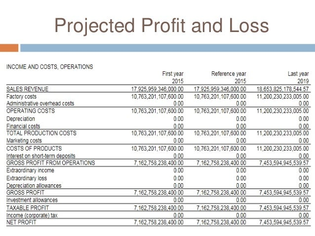 projected profit and loss statement