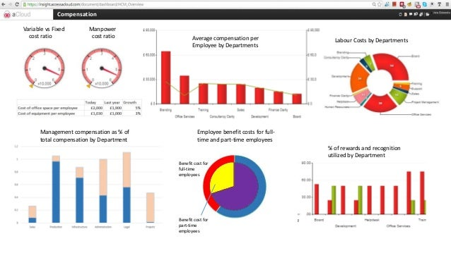 Hcm Access Insight Dashboard