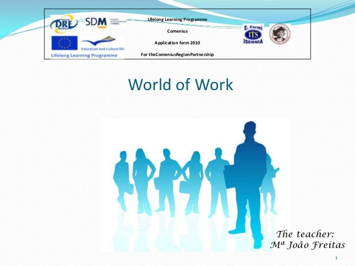 Lifelong Learning Programme            Comenius       Application form 2010 For theComeniusRegionPartnershipWorld of Work ...
