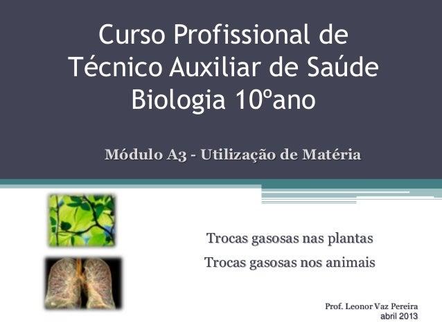 Curso Profissional deTécnico Auxiliar de SaúdeBiologia 10ºanoTrocas gasosas nas plantasTrocas gasosas nos animaisProf. Leo...