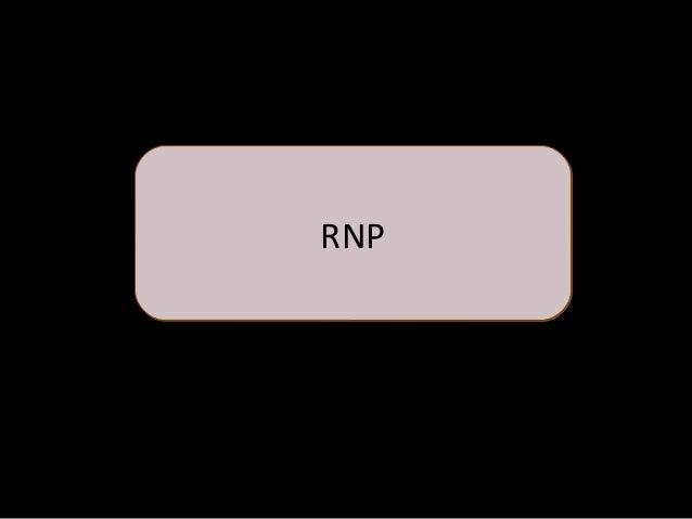 ¿Que es el RNP?  Los proveedores no tendrán que presentar documentos de su constitución en cada proceso que participe.  ...