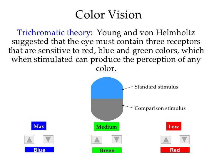 mod-14-basic-concepts-and-vision-48-728 What Color Does Green And Red Make