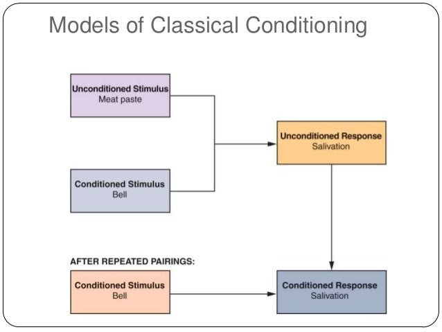 types of choice models in consumer behaviour