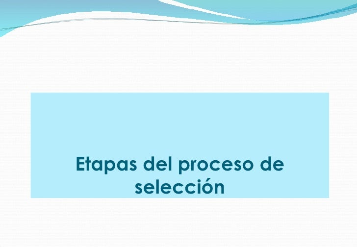 Etapas del proceso de selección