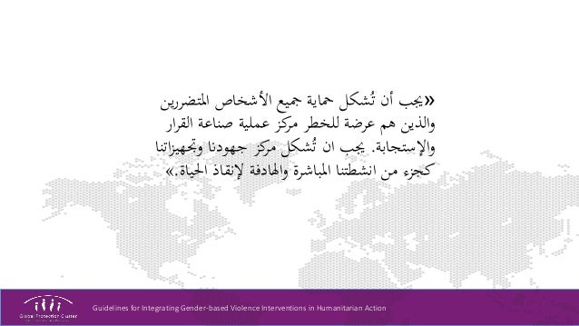 Guidelines for Integrating Gender-based Violence Interventions in Humanitarian Action «املتض األشخاص مجيع محاية ش...