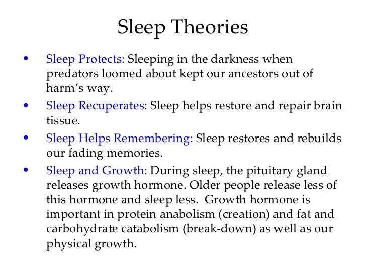 sleep theories Two studies suggest that the brain edits itself during sleep, paring  got a chance  to test their theory by looking at the synapses themselves.
