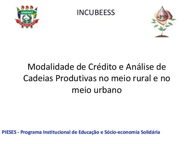 Modalidade de Crédito e Análise de Cadeias Produtivas no meio rural e no meio urbano INCUBEESS PIESES - Programa Instituci...
