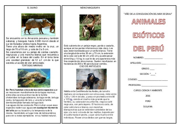 ANIMALES EXTICOS DEL PER