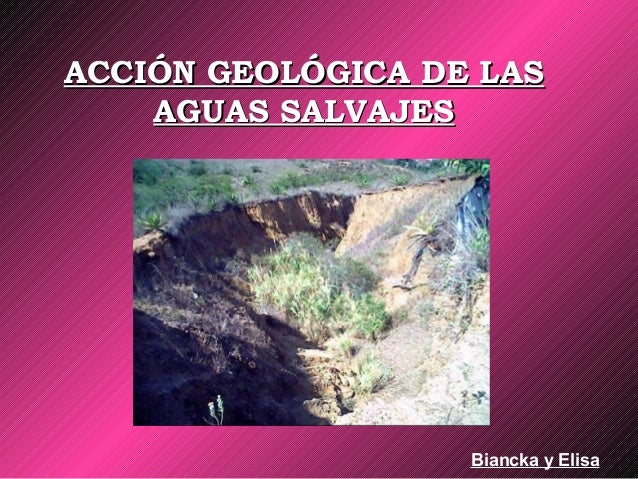 ACCIÓN GEOLÓGICA DE LASACCIÓN GEOLÓGICA DE LAS AGUAS SALVAJESAGUAS SALVAJES Biancka y Elisa