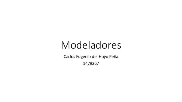Modeladores Carlos Eugenio del Hoyo Peña 1479267