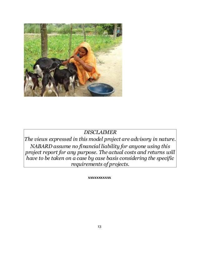 Model bankable scheme on goat - NABARD - 10 animals