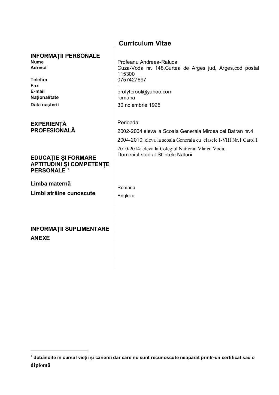 Model CV - Information Technology