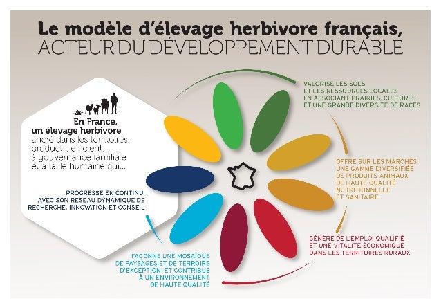 Diaporama - Le modèle d'élevage herbivore français