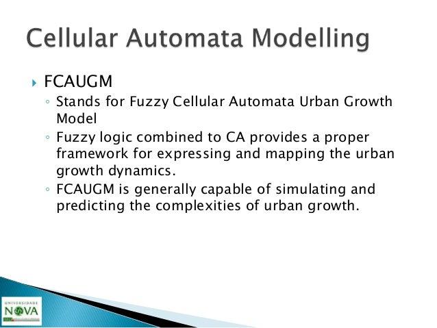 Modeling Urban Dynamics