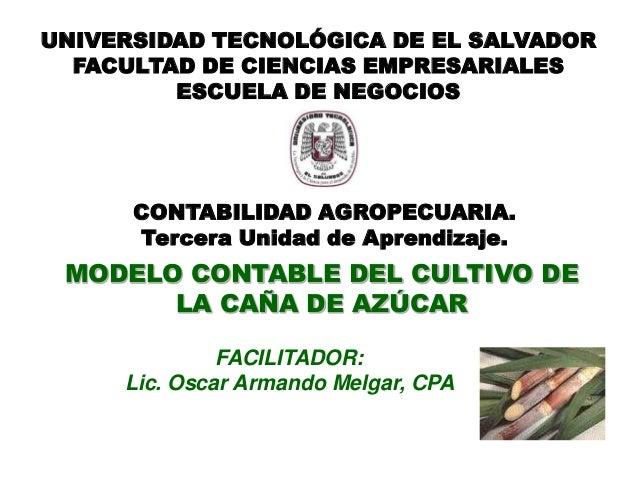 MODELO CONTABLE DEL CULTIVO DE LA CAÑA DE AZÚCAR FACILITADOR: Lic. Oscar Armando Melgar, CPA UNIVERSIDAD TECNOLÓGICA DE EL...