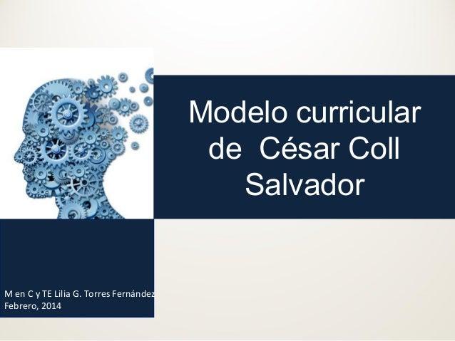 Modelo curricular de César Coll Salvador  M en C y TE Lilia G. Torres Fernández Febrero, 2014
