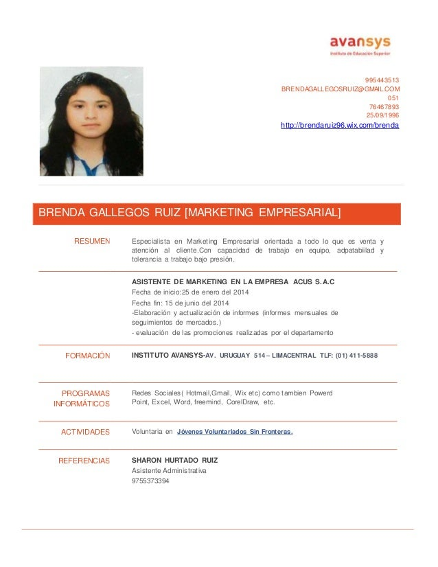 Curriculum Vitae No Documentado Modelo Doc