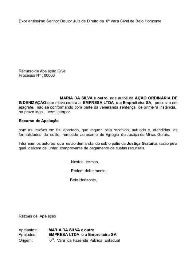 Excelentíssimo Senhor Doutor Juiz de Direito da 0ª Vara Cível de Belo Horizonte Recurso de Apelação Cível Processo Nº : 00...