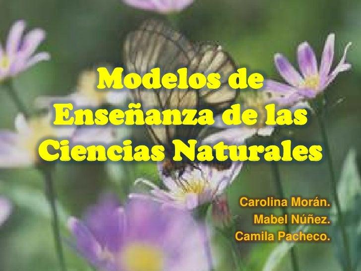 Modelo de ense anza de las ciencias naturales - Aromatizantes naturales para la casa ...