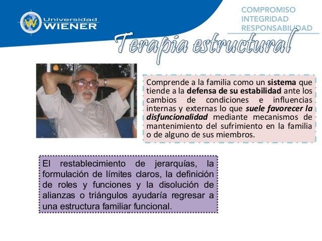 Comprende a la familia como un sistema que tiende a la defensa de su estabilidad ante los cambios de condiciones e influen...