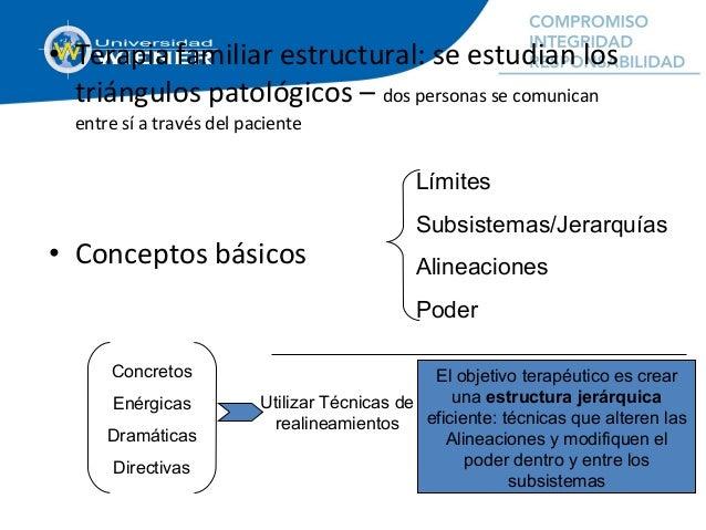 • Terapia familiar estructural: se estudian los triángulos patológicos – dos personas se comunican entre sí a través del p...
