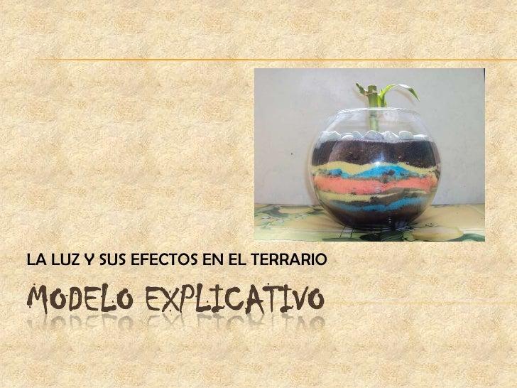 MODELO EXPLICATIVO<br />LA LUZ Y SUS EFECTOS EN EL TERRARIO<br />