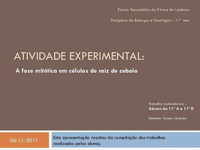 Escola Secundária da Póvoa de Lanhoso  Disciplina de Biologia e Geologia – 11º ano  ATIVIDADE EXPERIMENTAL: A fase mitótic...