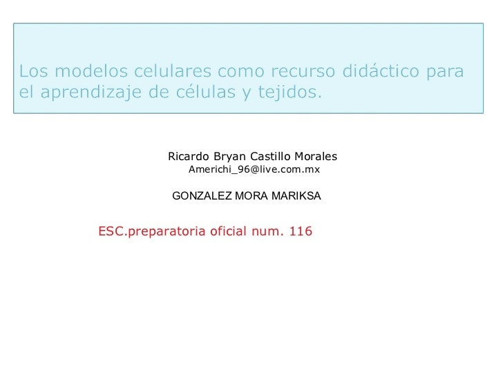Ricardo Bryan Castillo Morales             Americhi_96@live.com.mx           GONZALEZ MORA MARIKSAESC.preparatoria oficial...