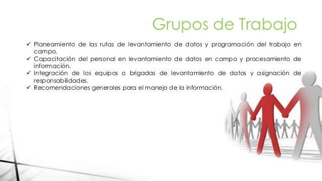 Grupos de Trabajo  Planeamiento de las rutas de levantamiento de datos y programación del trabajo en campo.  Capacitació...