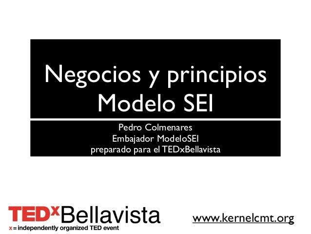 www.kernelcmt.orgNegocios y principiosModelo SEIPedro ColmenaresEmbajador ModeloSEIpreparado para el TEDxBellavista