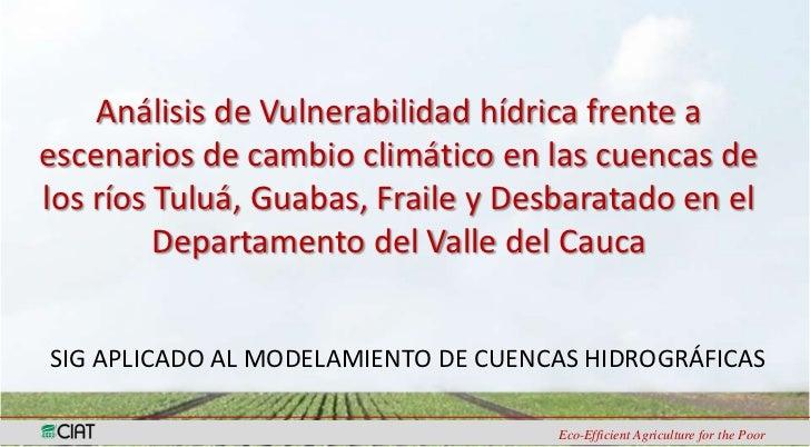 Análisis de Vulnerabilidad hídrica frente aescenarios de cambio climático en las cuencas delos ríos Tuluá, Guabas, Fraile ...