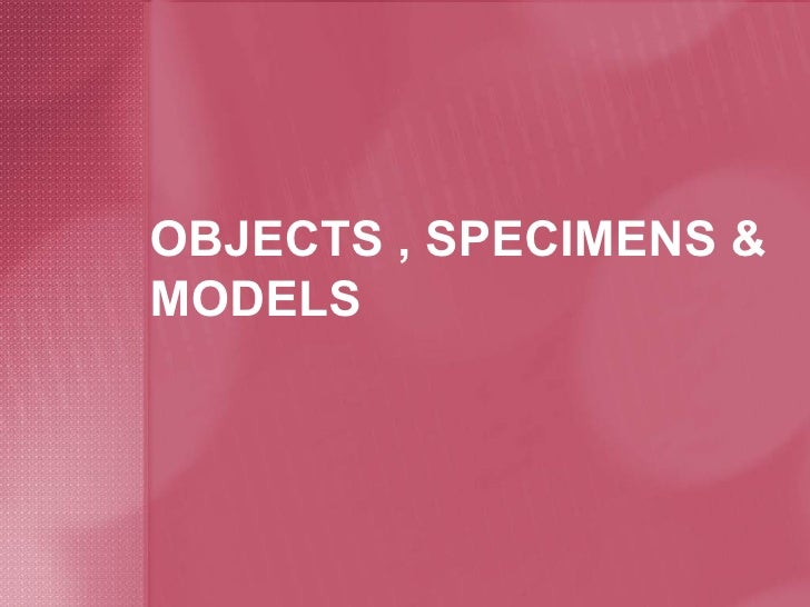 OBJECTS , SPECIMENS & MODELS