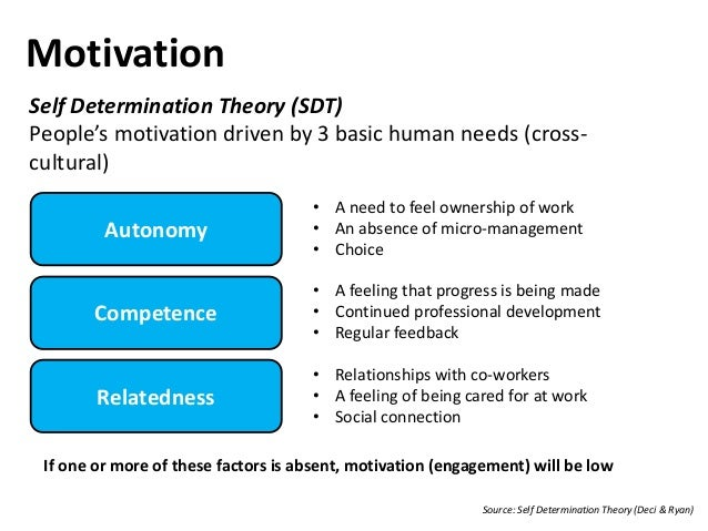 Importance of Motivation in Human Resource Development (HRD)