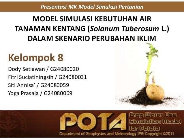 MODEL SIMULASI KEBUTUHAN AIR TANAMAN KENTANG (Solanum Tuberosum L.) DALAM SKENARIO PERUBAHAN IKLIM Kelompok 8 Dody Setiawa...