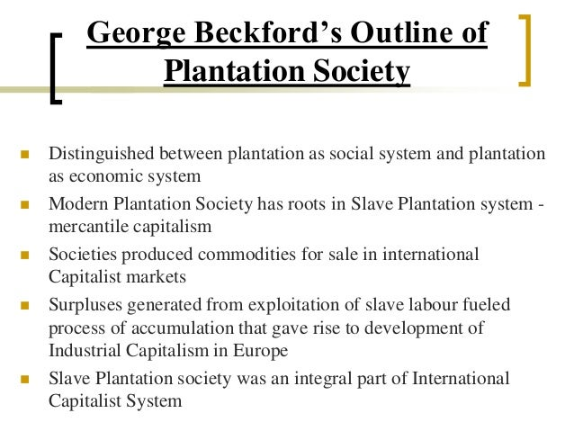 the plantation society