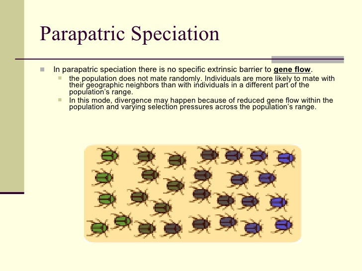 Natural Selection Speciation
