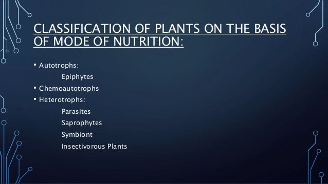 CLASSIFICATION OF PLANTS ON THE BASIS  OF MODE OF NUTRITION:  • Autotrophs:  Epiphytes  • Chemoautotrophs  • Heterotrophs:...