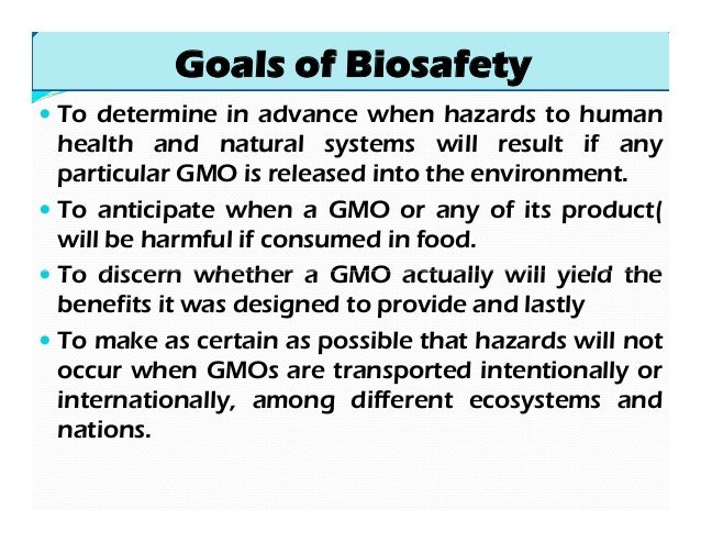 effects of biotechnology in healthcare 2| foee the socio-economic effects of gmos the socio-economic effects of gmos hidden costs for the food chain european food producers comply with.