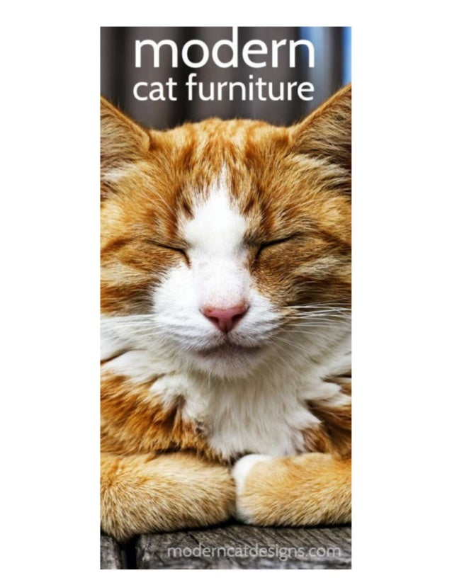 Modern cat furniture - Contemporary cat furniture ideas ...
