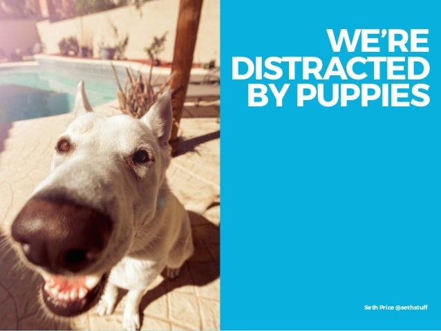 WE'RE DISTRACTED  BY PUPPIES Seth Price @sethstuff
