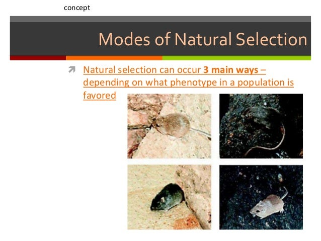 Are Natural Selection Favors Change