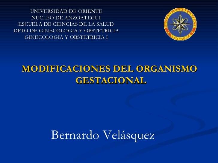 UNIVERSIDAD DE ORIENTE NUCLEO DE ANZOATEGUI ESCUELA DE CIENCIAS DE LA SALUD DPTO DE GINECOLOGIA Y OBSTETRICIA GINECOLOGIA ...