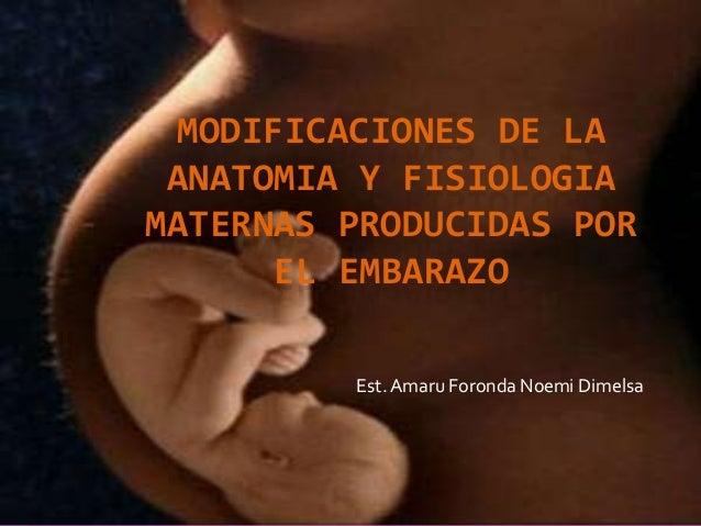 Modificaciones de la anatomia y fisiologia maternas producidas