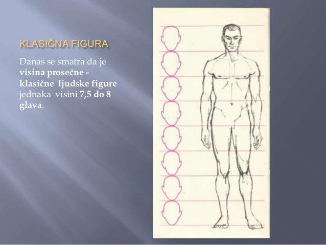 KLASIČNA FIGURAModel ţenske figure od 8glava prikazuje delovetela, njihove međusobneodnose i od koliko glava sesastoje.Tak...