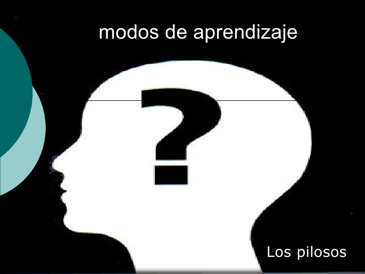 modos de aprendizaje Los pilosos