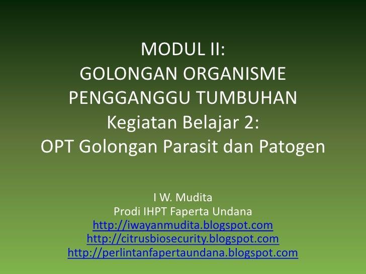 MODUL II:GOLONGAN ORGANISME PENGGANGGU TUMBUHANKegiatan Belajar 2:OPT Golongan Parasit dan Patogen<br />I W. Mudita<br />P...