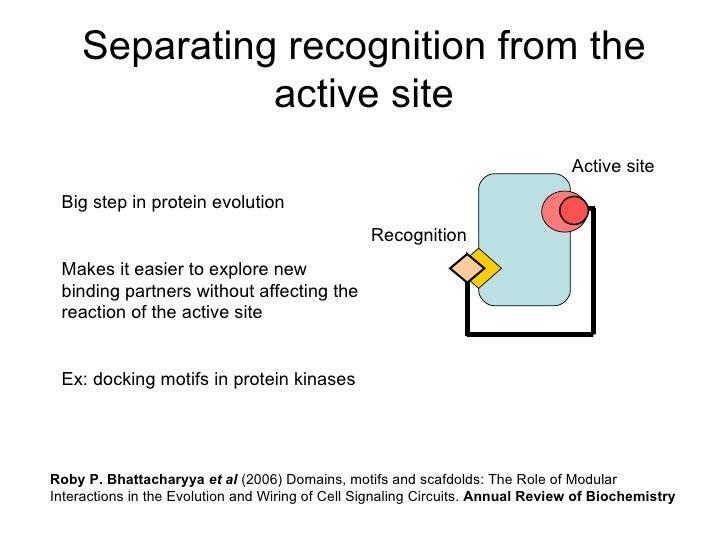 Modularity and evolvability Slide 3